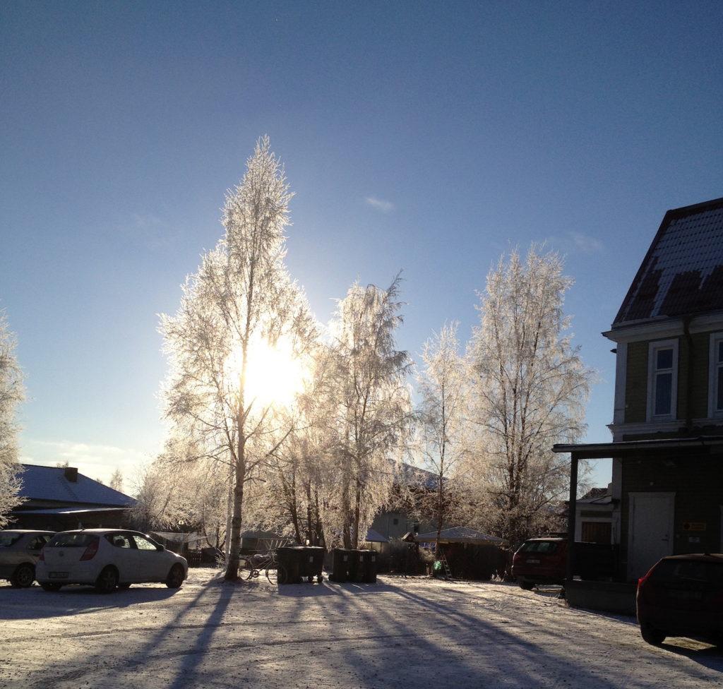 vinterdag i Boden