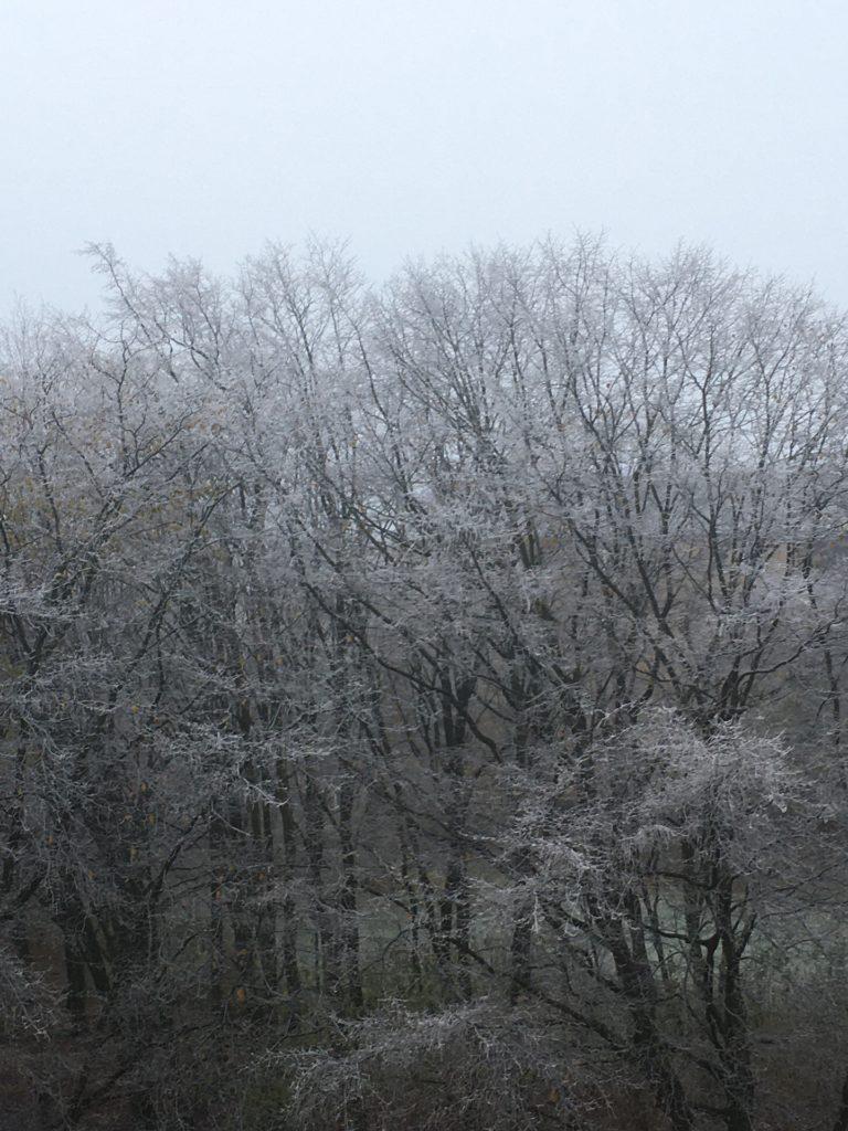 vinter i Helsingborg